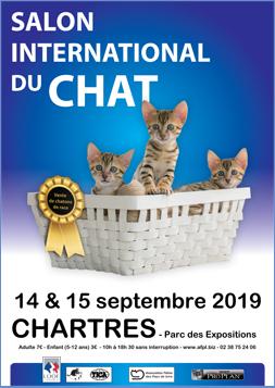 salon-international-du-chat